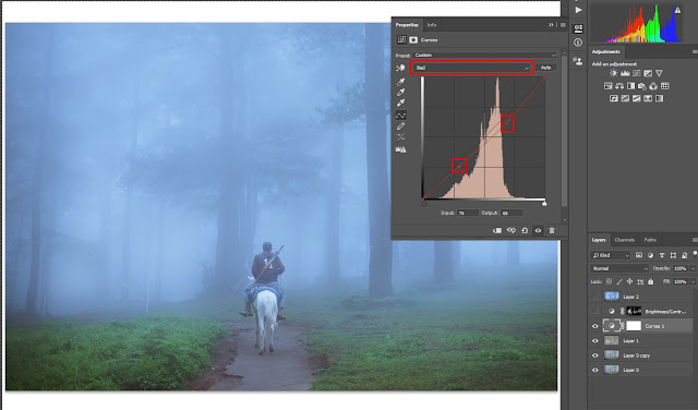 tips edit foto menggunakan curve photoshop cmy rgb
