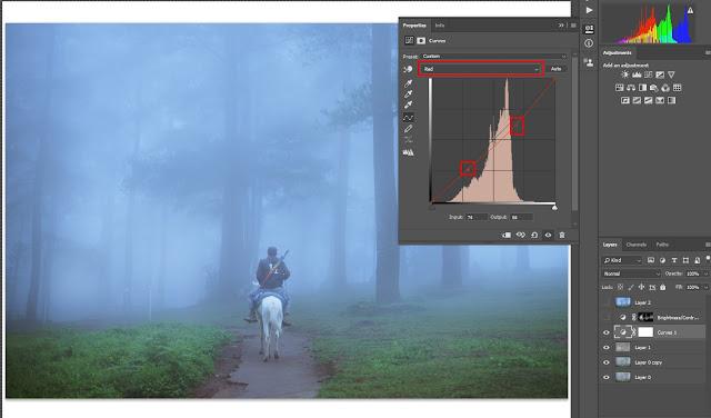 tips edit foto menggunakan curve photoshop cmy rgb
