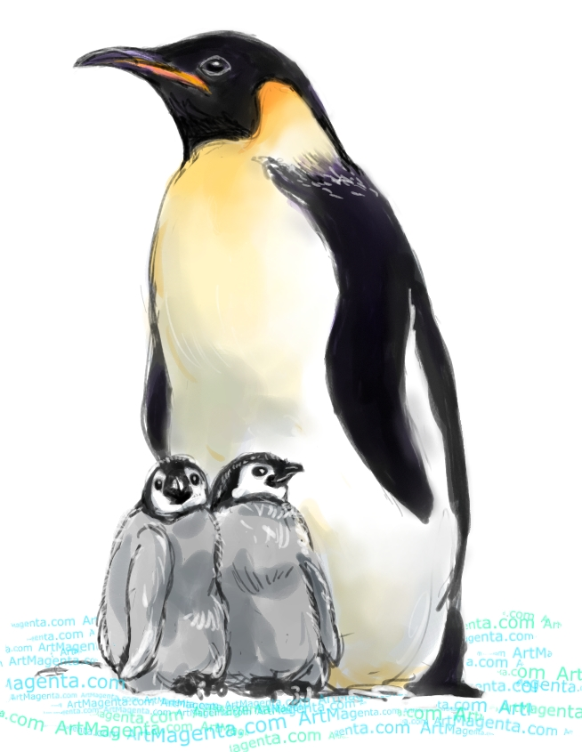 Emperor Penguin sketch painting. Bird art drawing by illustrator Artmagenta