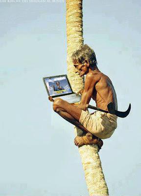 Lustiger Mann sitzt mit Laptop auf Palme - Lustige Bilder Blog schreiben