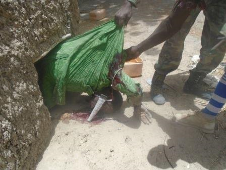 4 Photos: Troops capture 9 Boko Haram terrorists who hid in fox holes, rescue 400 hostages