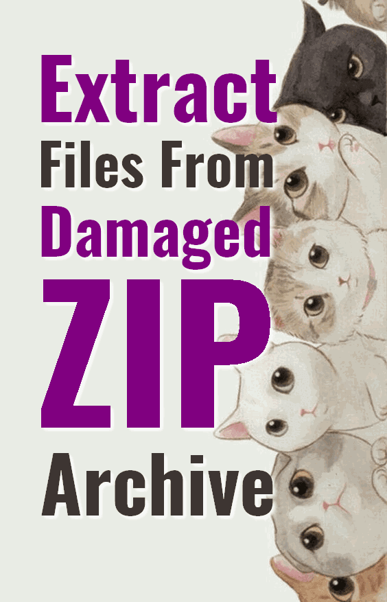 ZIP repair help you to extract files form damaged or corrupt zip archive which is not possible by regular zip software.