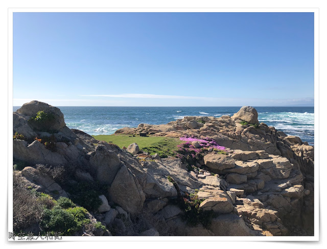 Monterey 17 miles drive 7