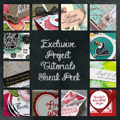 Exclusive Project Tutorials Sneak Peek for my customers who place an order of $50 or more each month | Nature's INKspirations by Angie McKenzie