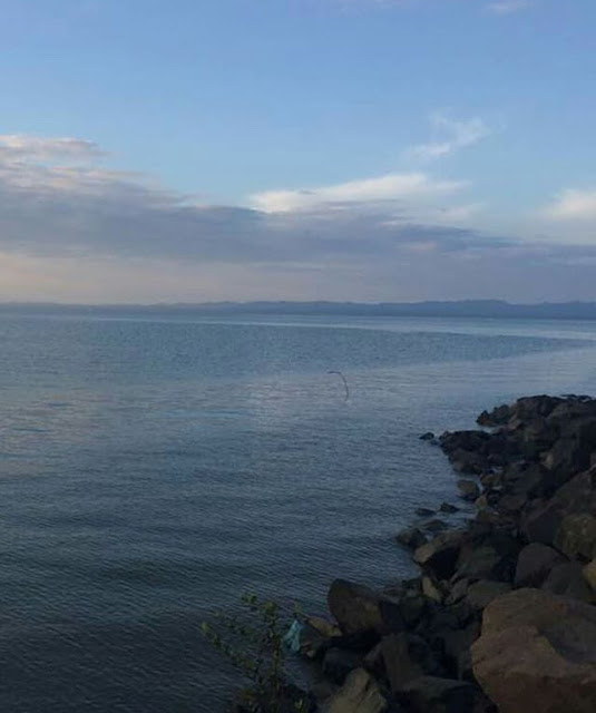 Pasir Putih Tapak Perkhemahan Yang Menarik Di Tawau, Sabah