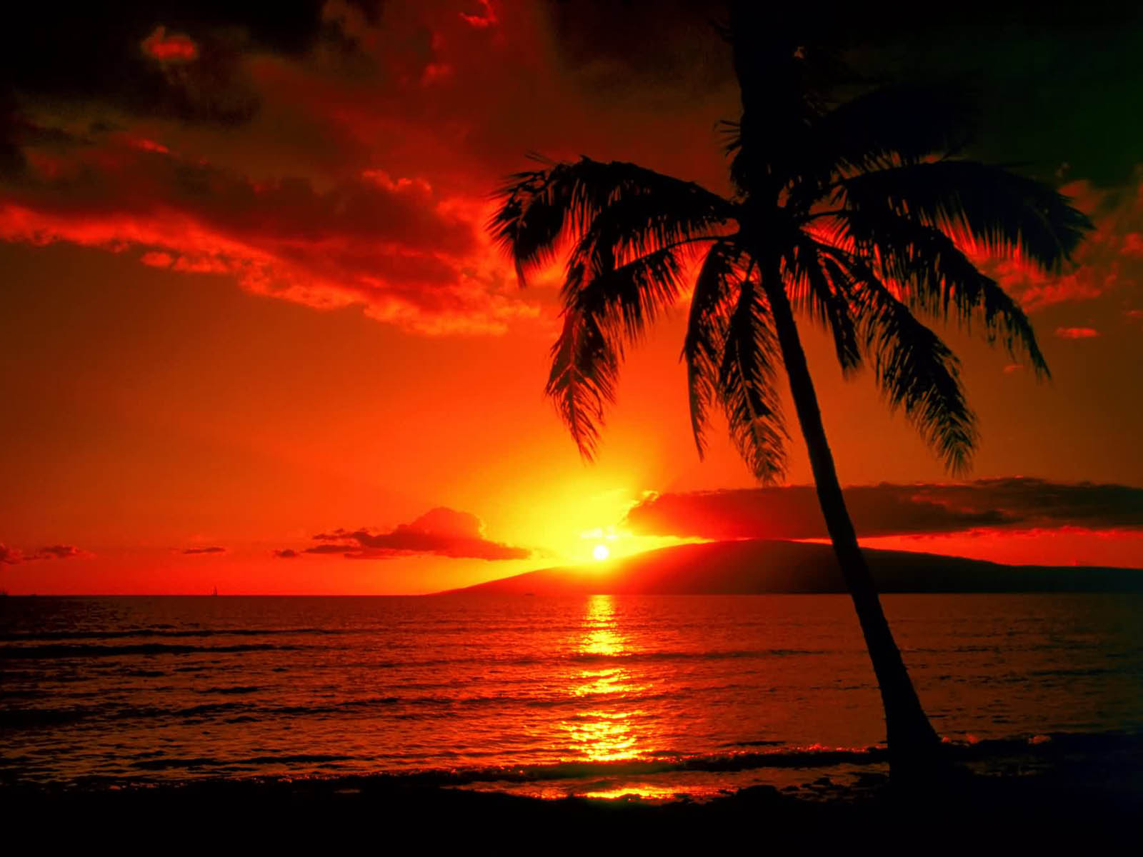 Celebrity Wallpapers: Island Sunset Wallpapers