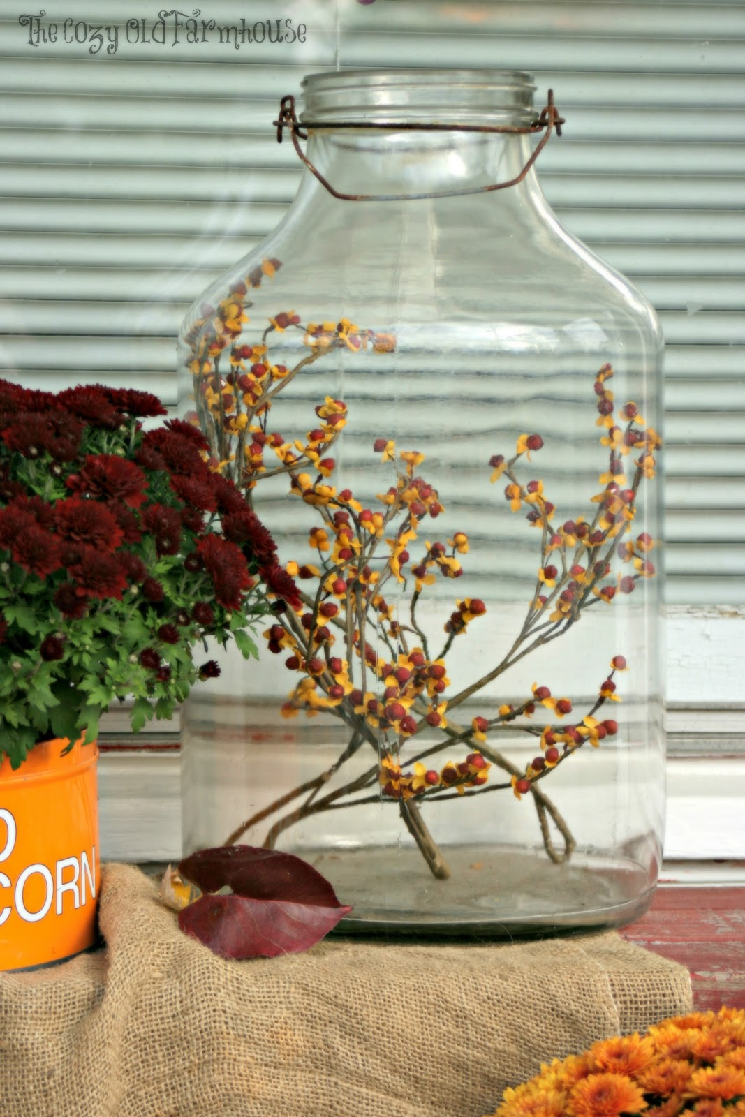 Wish i could find or buy bittersweet branches in our area don t - The Old Glass Jar Has Some Faux Bittersweet Branches In It Sure Wish I Had The Real Thing