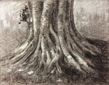 Charcoal and white soft pastel sketching of exposed roots of a tree by Manju Panchal
