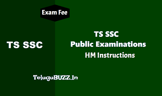 HM Instructions for SSC Public Exams March 2019