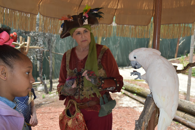 Georgia Renaissance Festival Revisited 2018  via  www.productreviewmom.com