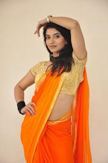 Actress Kashmira Kulkarni Stills in Saree at Drishya Kavyam Movie Success Meet  0013.jpg