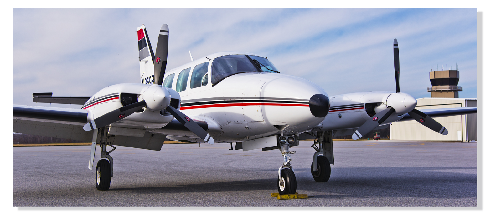 What does the surveyor in the aviation industry