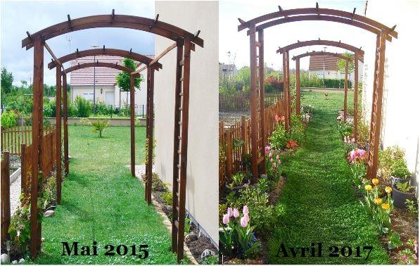 Mon petit jardin en Sologne: Avant/Après (allée fleurie)