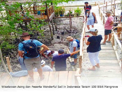 Wisatawan Asing dan Peserta Wonderful Sail in Indonesia Tanam 100 Bibit Mangrove di Debut