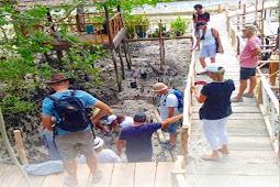 Wisatawan Asing dan Peserta Wonderful Sail in Indonesia Tanam 100 Bibit Mangrove di Debut