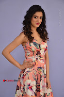 Actress Richa Panai Pos in Sleeveless Floral Long Dress at Rakshaka Batudu Movie Pre Release Function  0010.JPG