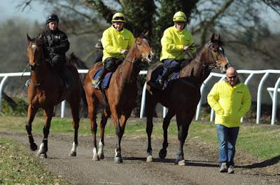 Richard Fahey on the gallops