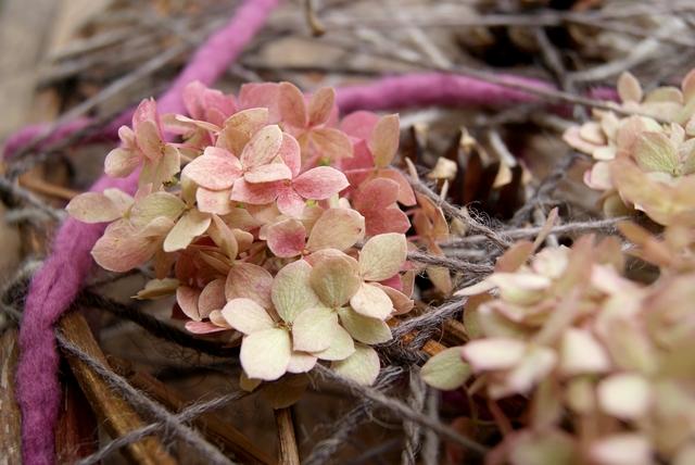 Detail Türkranz mit Wolle Filzschnüren und Hortensienblüte