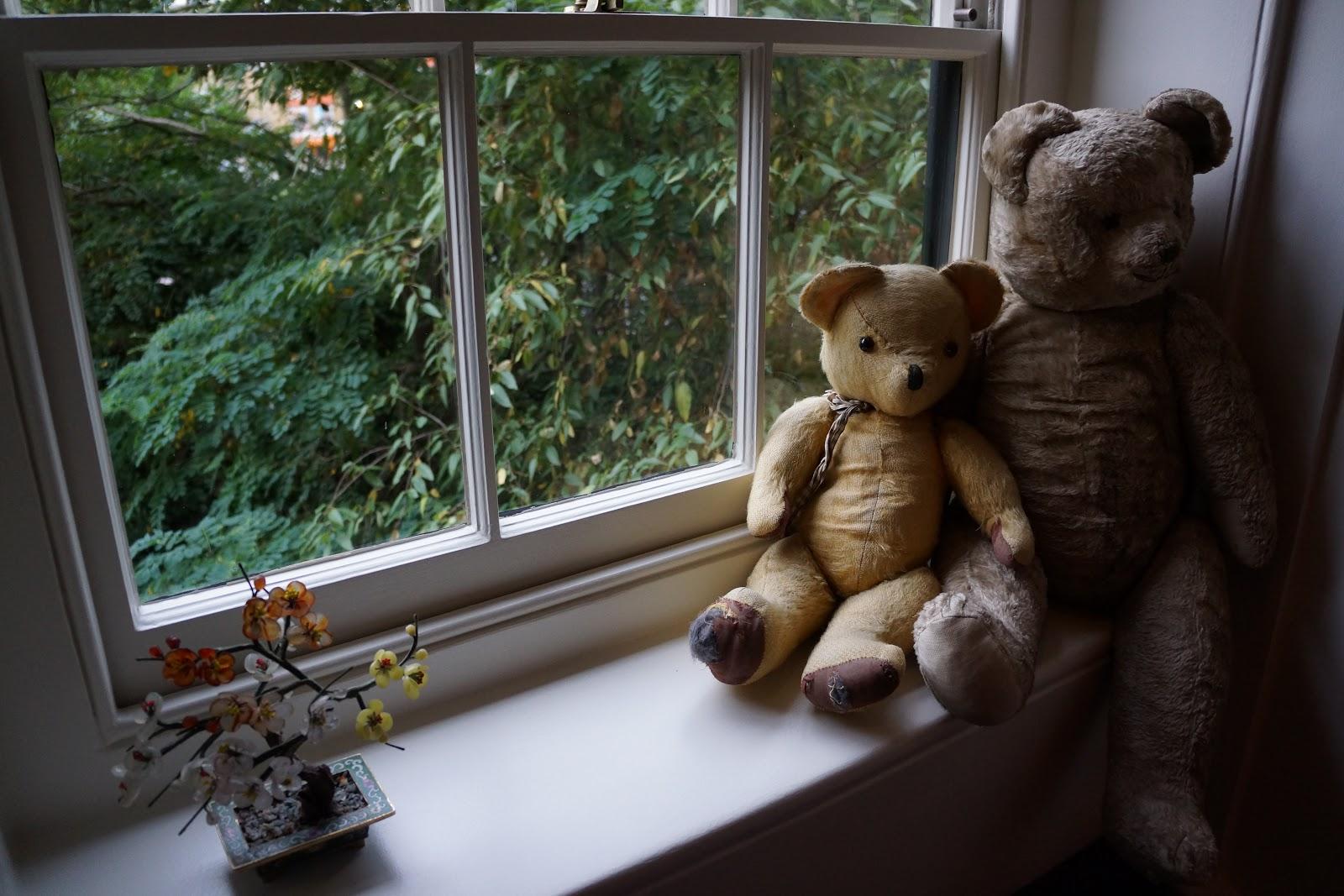 steiff teddy bears on a window sill