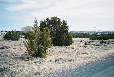 Concho Land for Sale Under $3000
