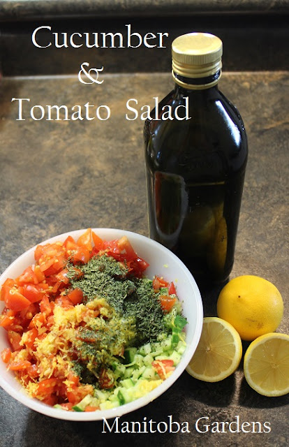 Tomato and Cucumber Salad Middle Eastern Canadian Style