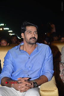 Nenu Local Audio Launch Stills  0042.JPG