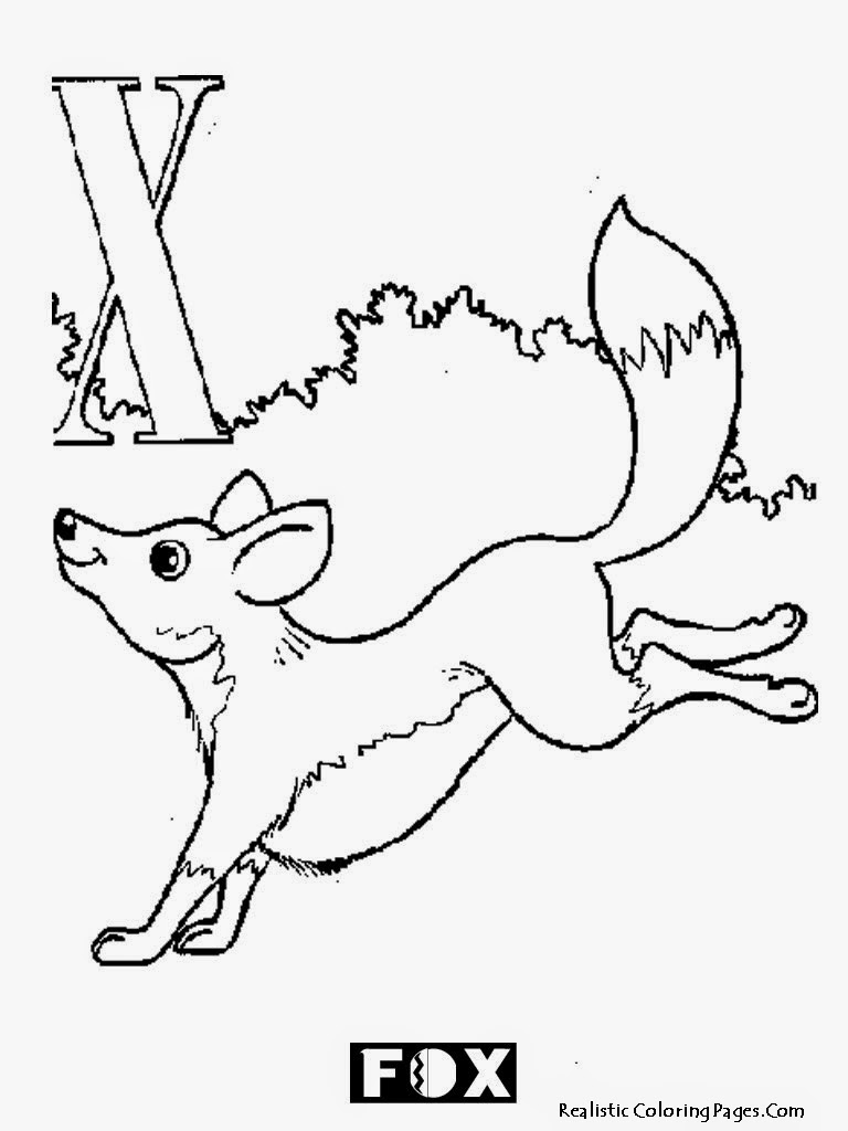 Animal Alphabet X Coloring Sheet Fox