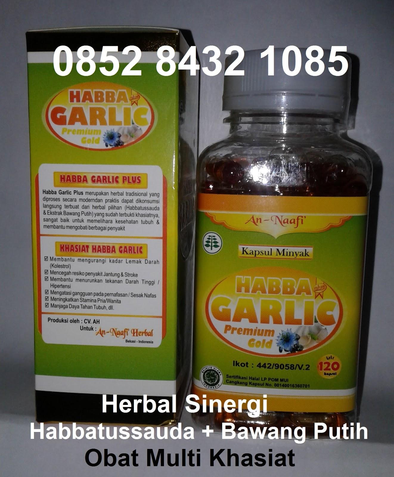 Jual Obat Jantung Koroner Gravistro Welcome To Ice Capsule Sakit Resep Herbal Alami Penyakit Dengan Daun Sukun