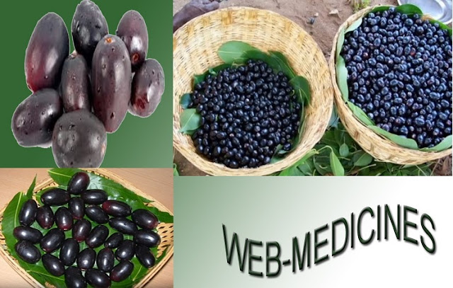 15 Health Benefits of Jamun or Jam