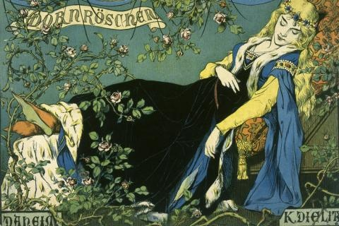 The world observed through eyes that see: Sleeping Beauty
