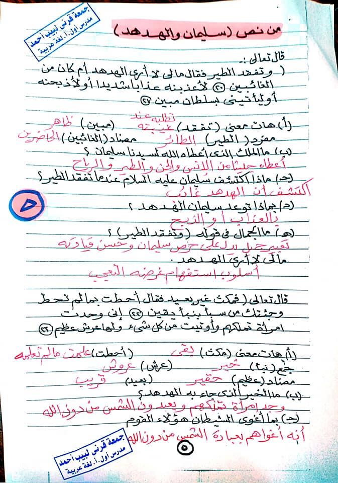 مراجعة اللغة العربية للصف الخامس الابتدائي ترم ثاني أ/ جمعة قرني لبيب 5