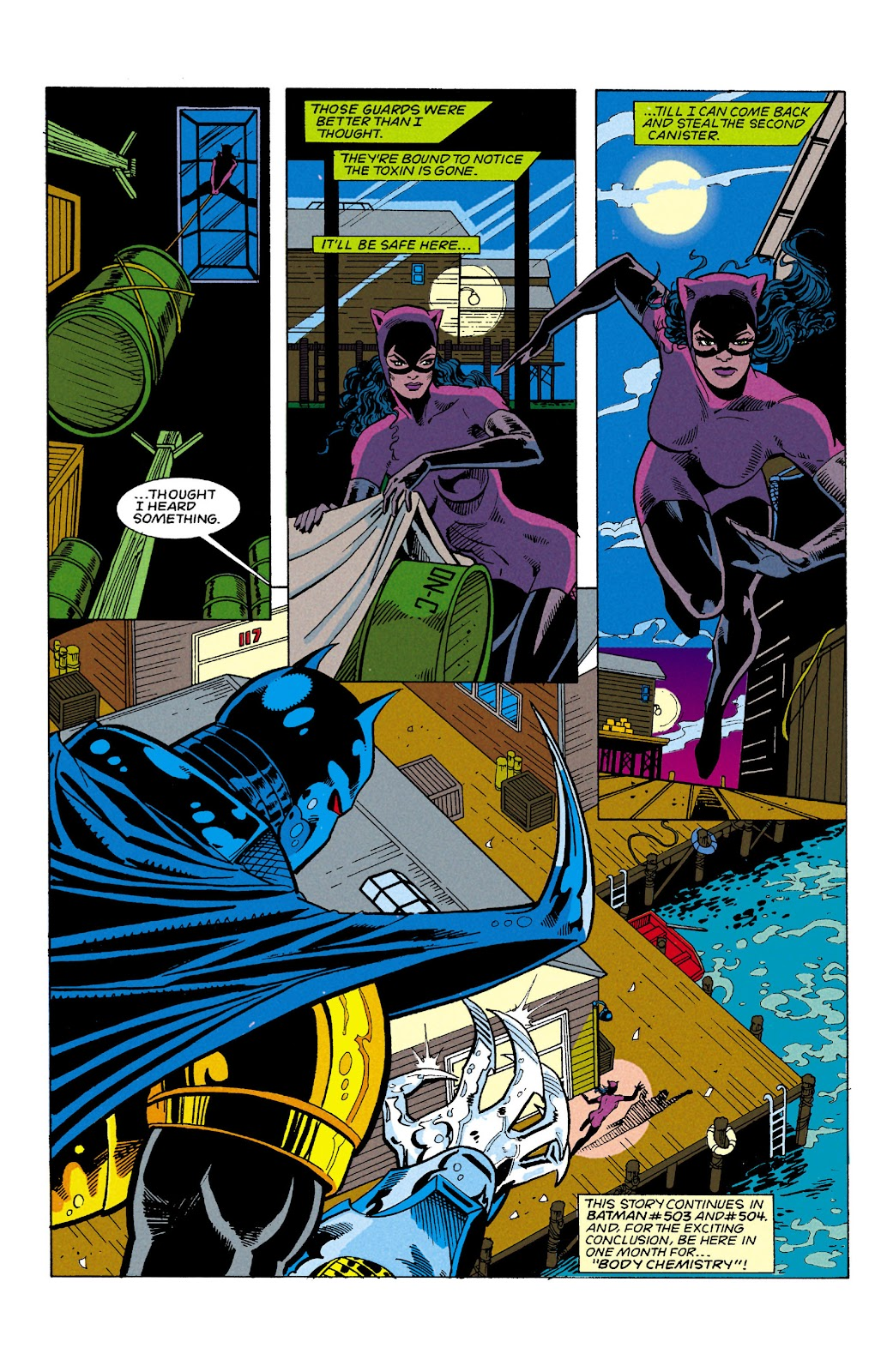 Catwoman (1993) Issue #6 #11 - English 23