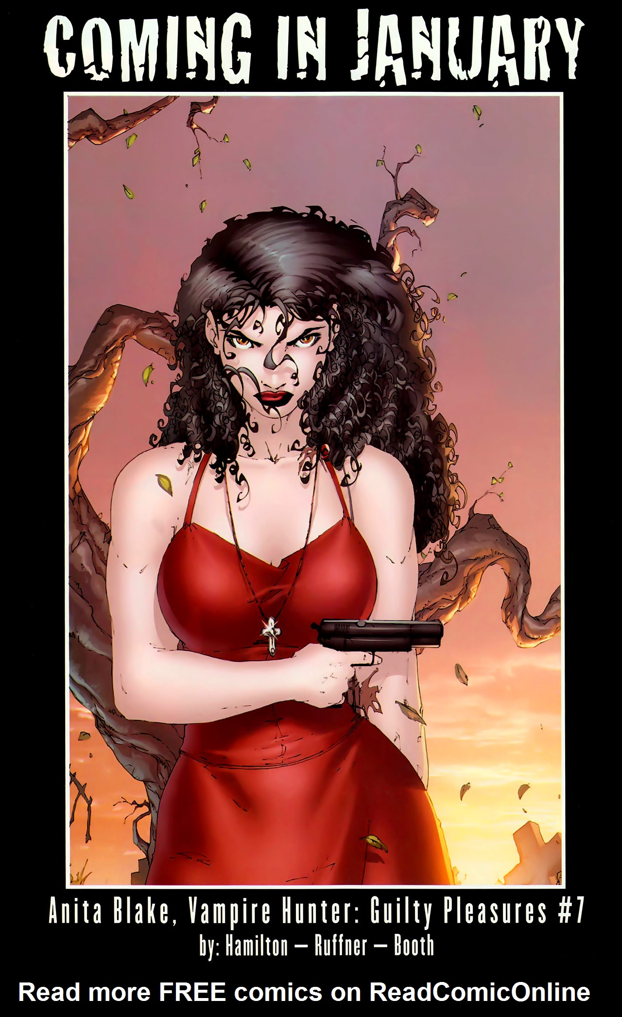 Read online Anita Blake, Vampire Hunter: The First Death comic -  Issue #2 - 41