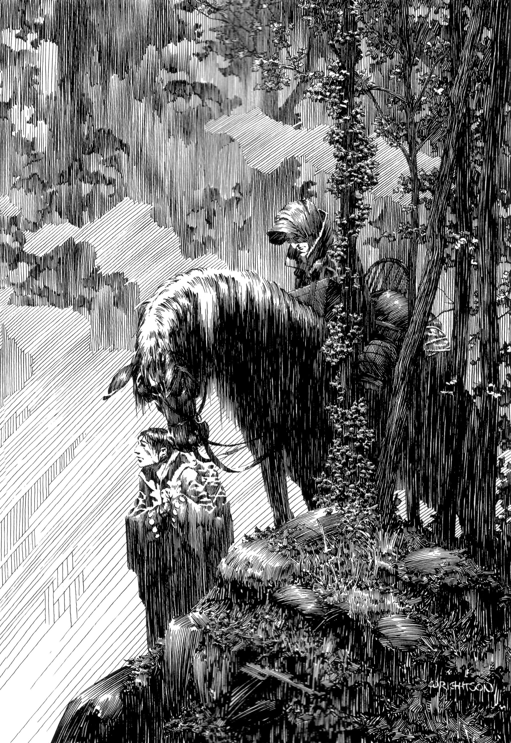 Read online Bernie Wrightson's Frankenstein comic -  Issue # Full - 26