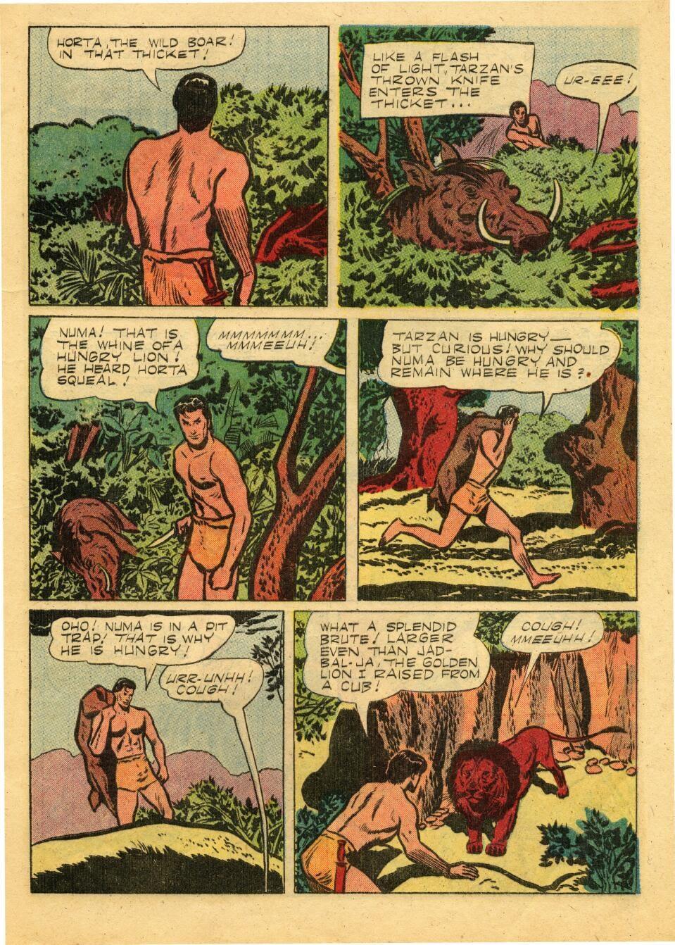 Tarzan (1948) issue 72 - Page 5