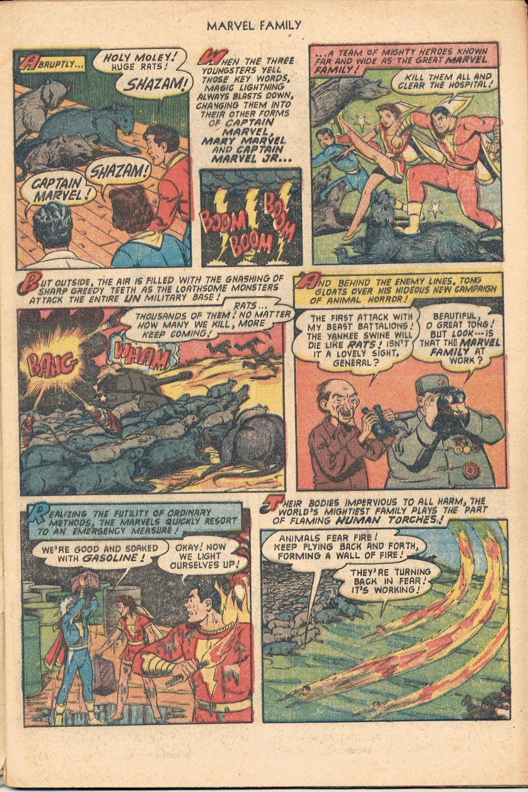The Marvel Family issue 82 - Page 5