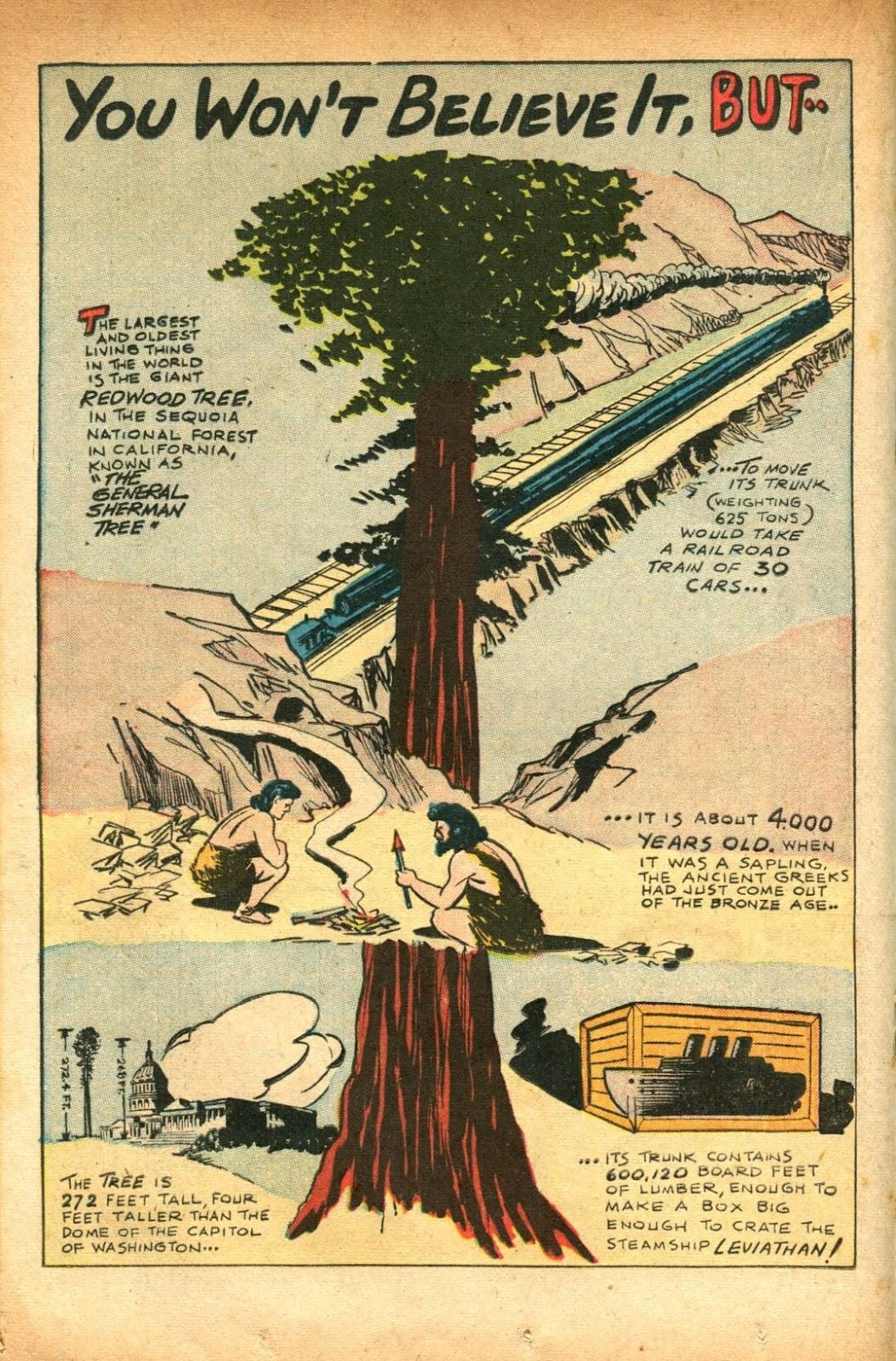Read online Super-Magician Comics comic -  Issue #51 - 26