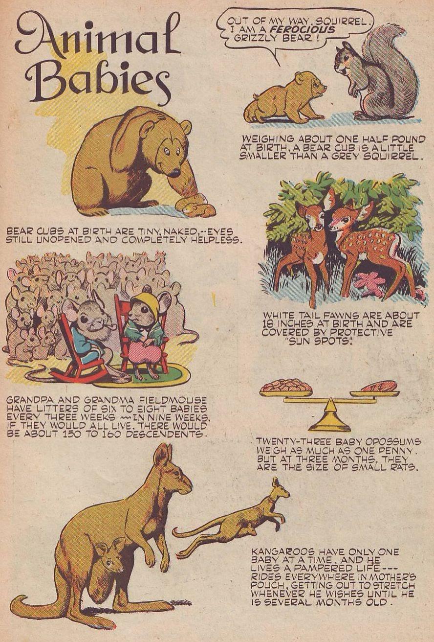 Read online Animal Comics comic -  Issue #25 - 45