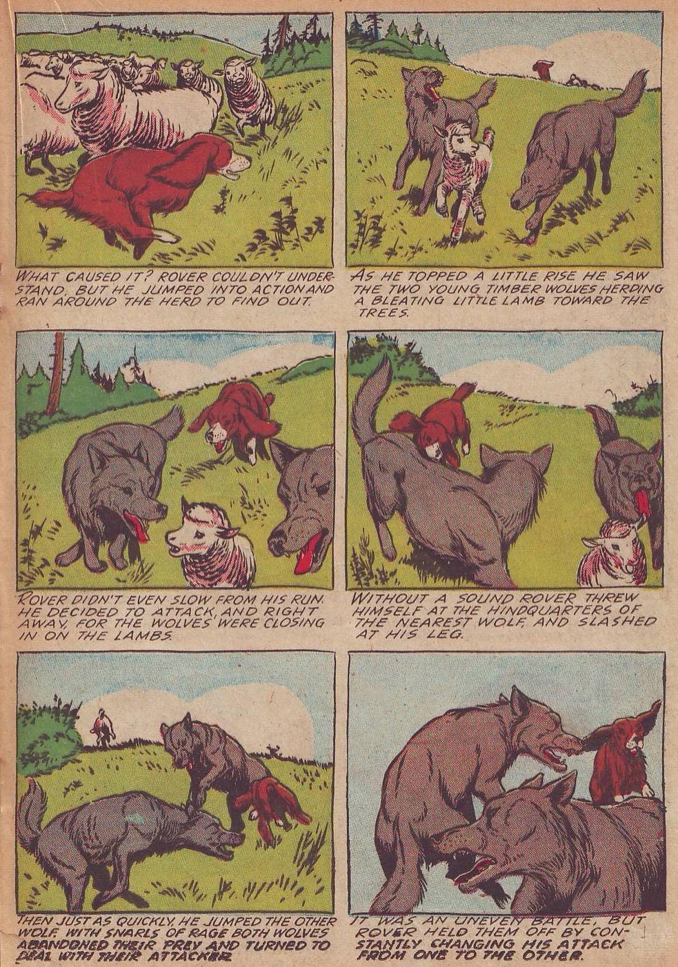 Read online Animal Comics comic -  Issue #21 - 25