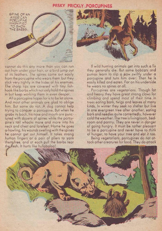 Read online Animal Comics comic -  Issue #25 - 43