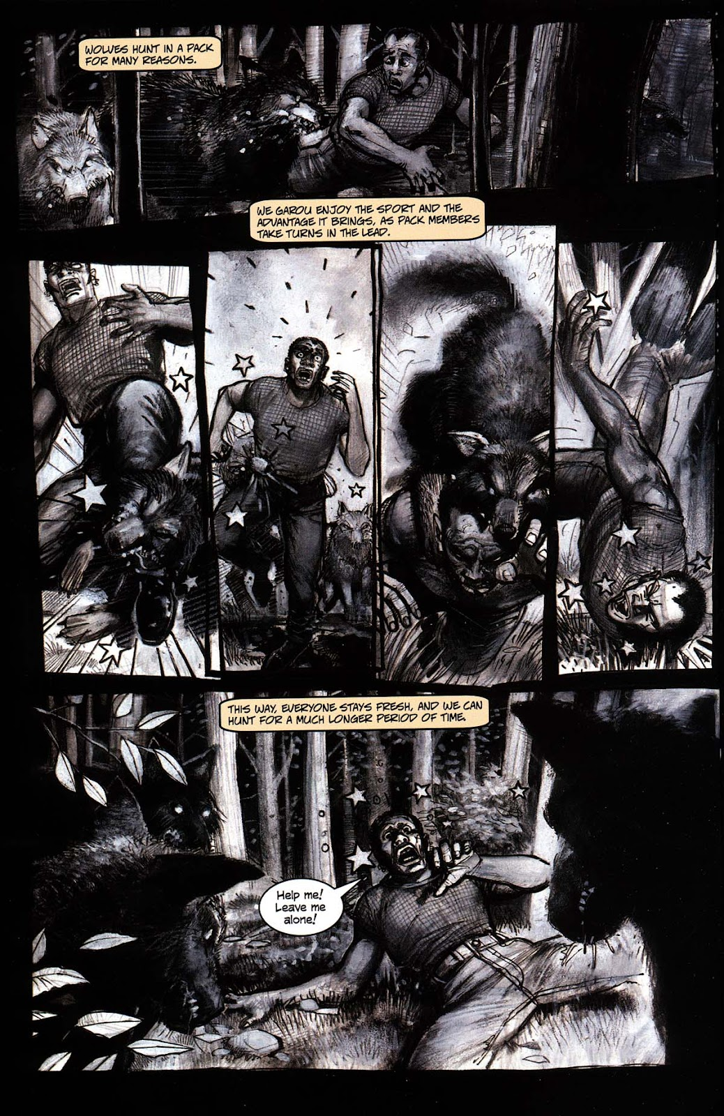 Read online Werewolf the Apocalypse comic -  Issue # Black Furies - 22