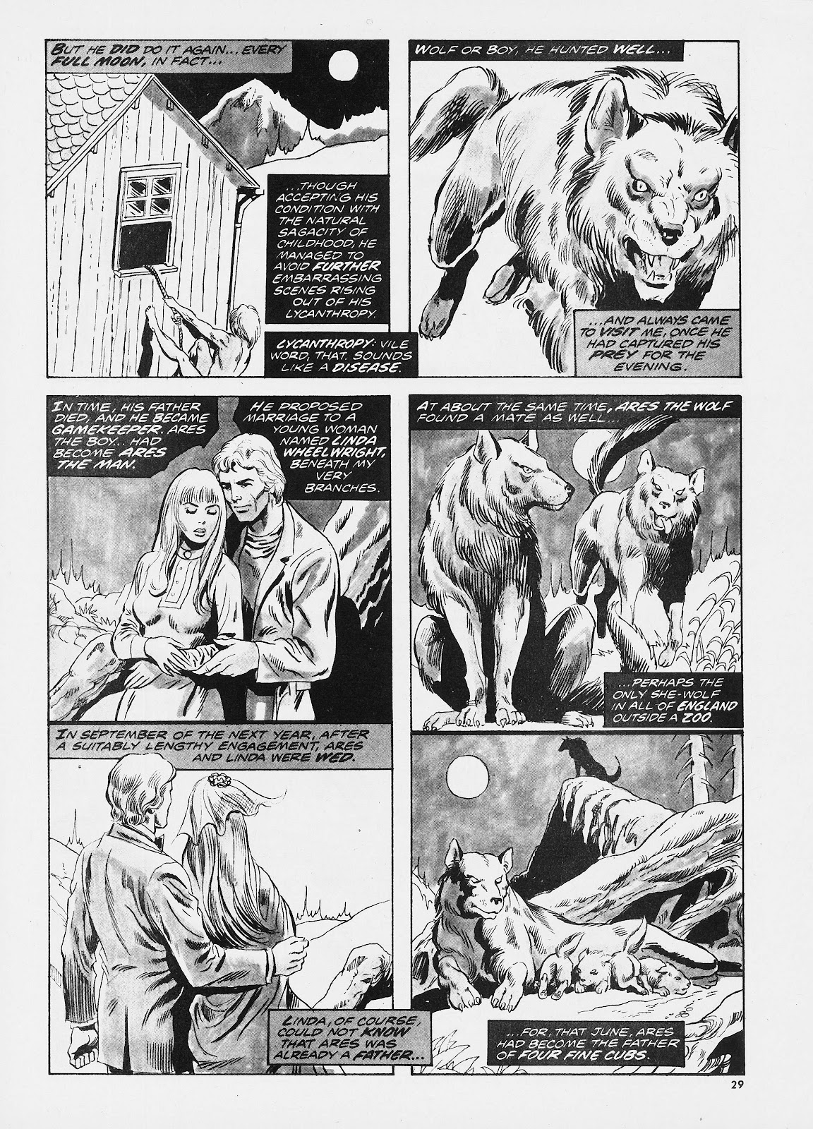 Haunt of Horror issue 1 - Page 29