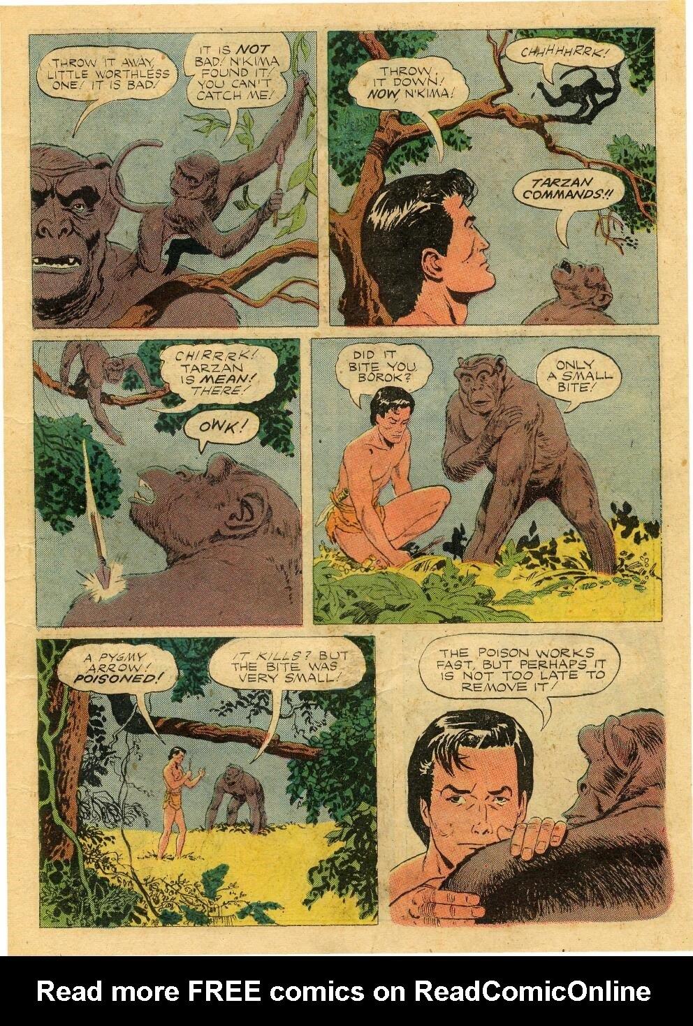 Tarzan (1948) issue 76 - Page 23