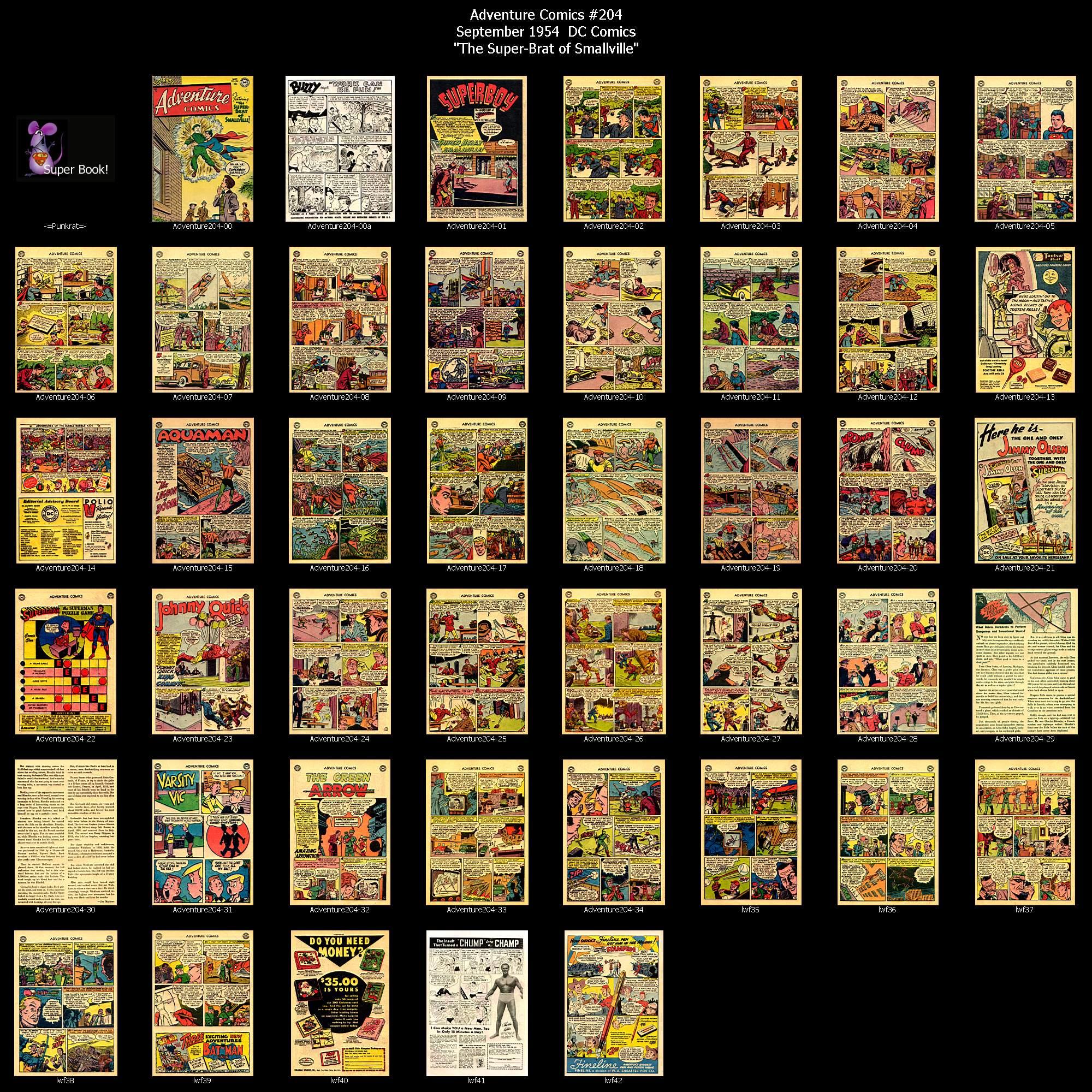 Read online Adventure Comics (1938) comic -  Issue #204 - 45