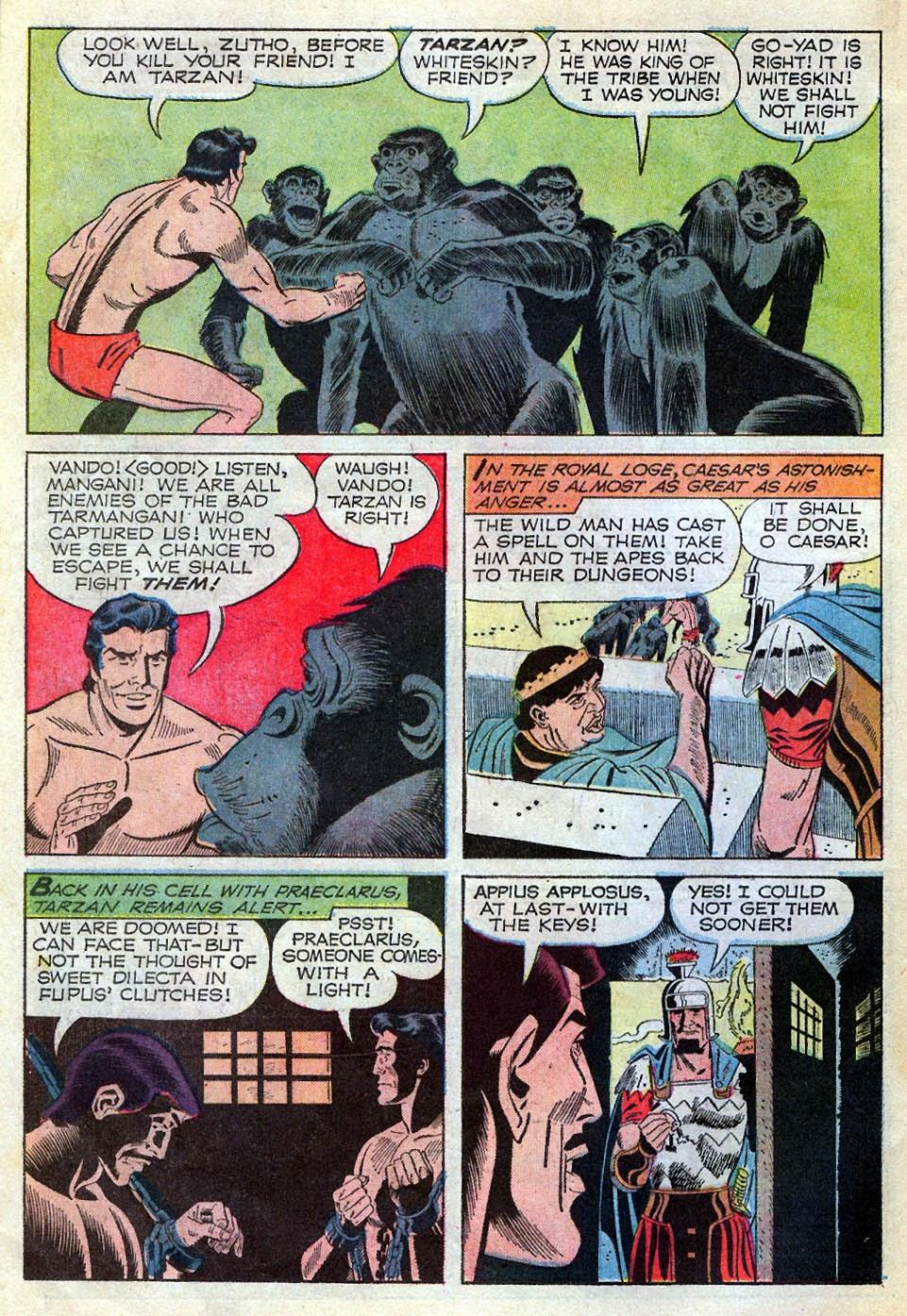 Tarzan (1962) issue 195 - Page 14