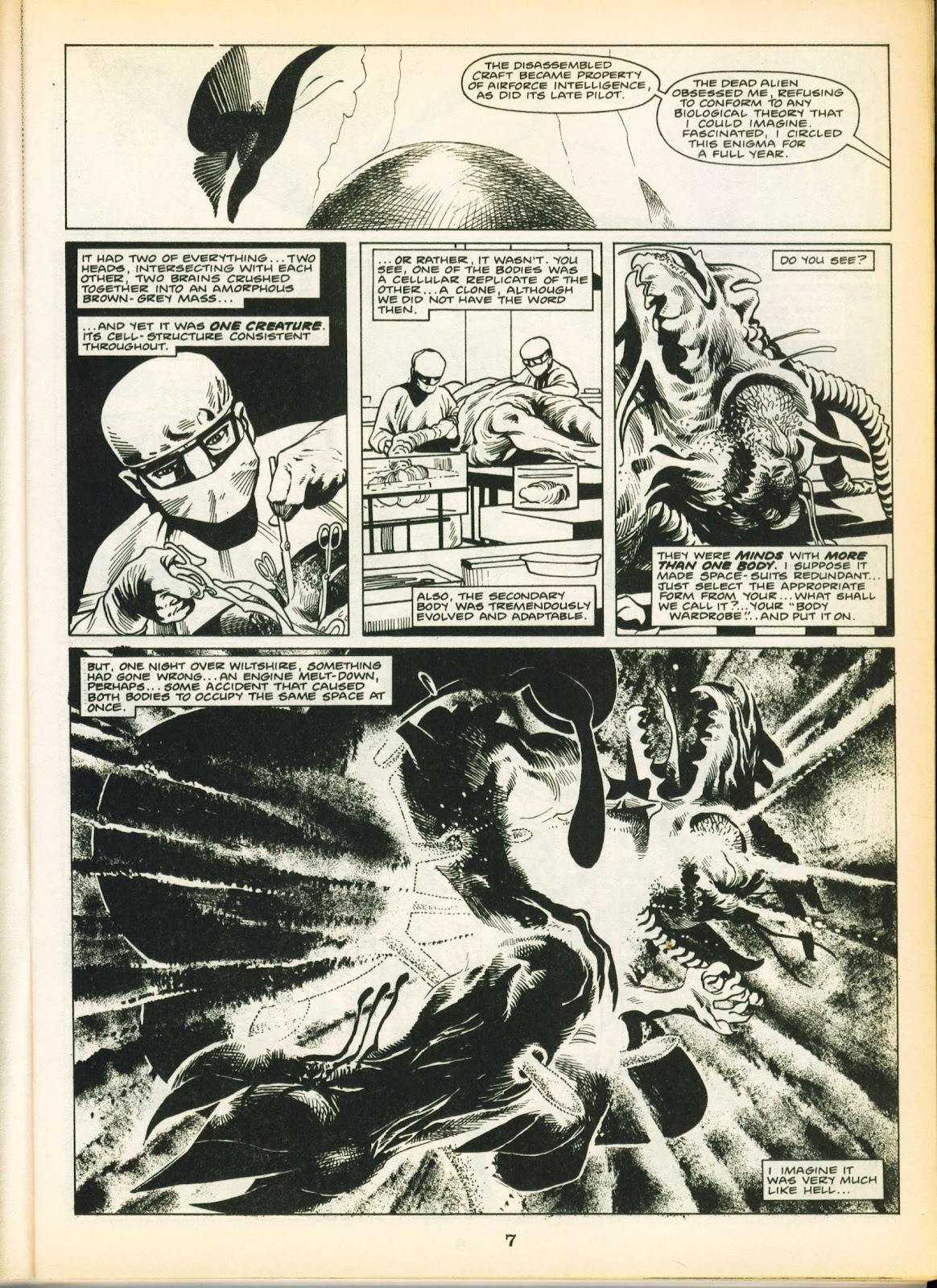 Warrior Issue #20 #21 - English 7