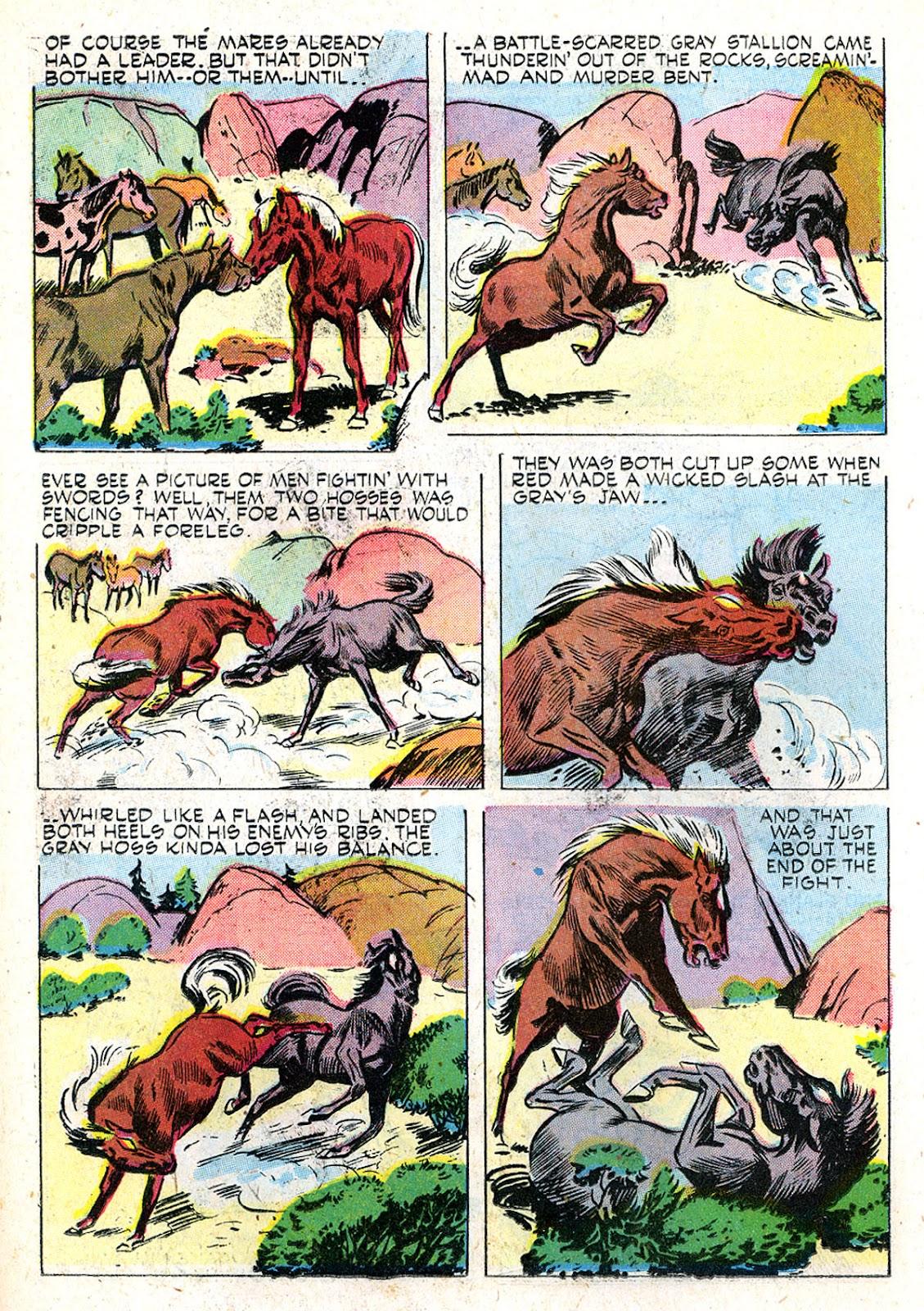 Read online Animal Comics comic -  Issue #29 - 28