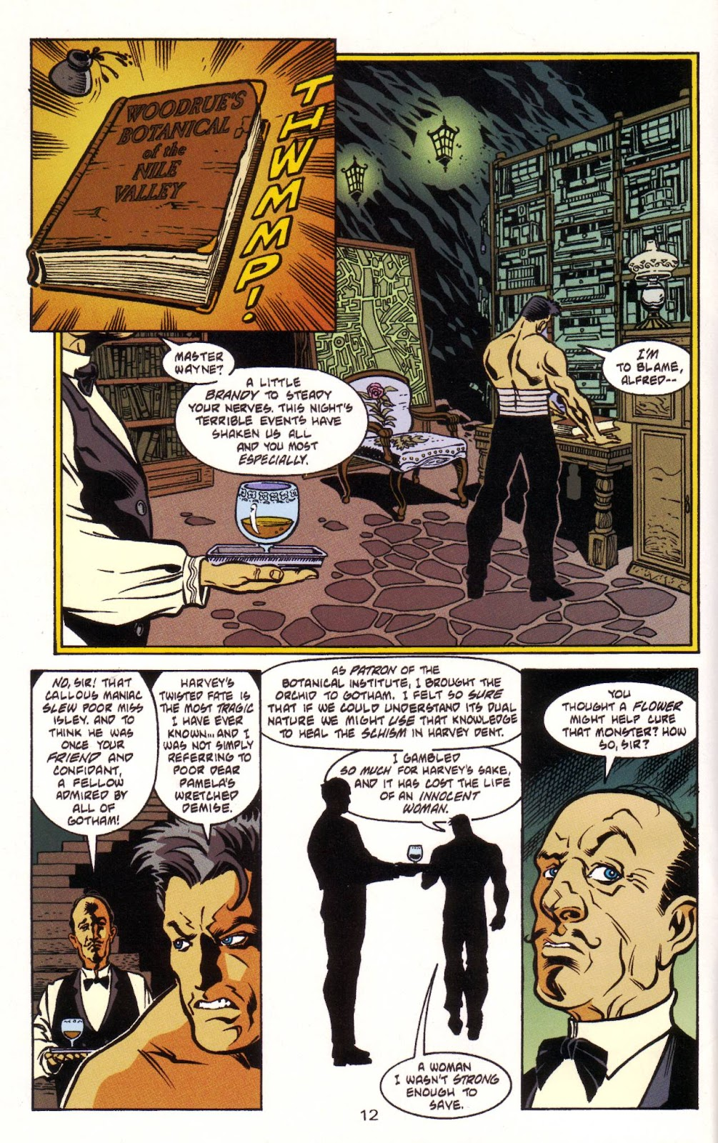 Batman: Two Faces issue Full - Page 13