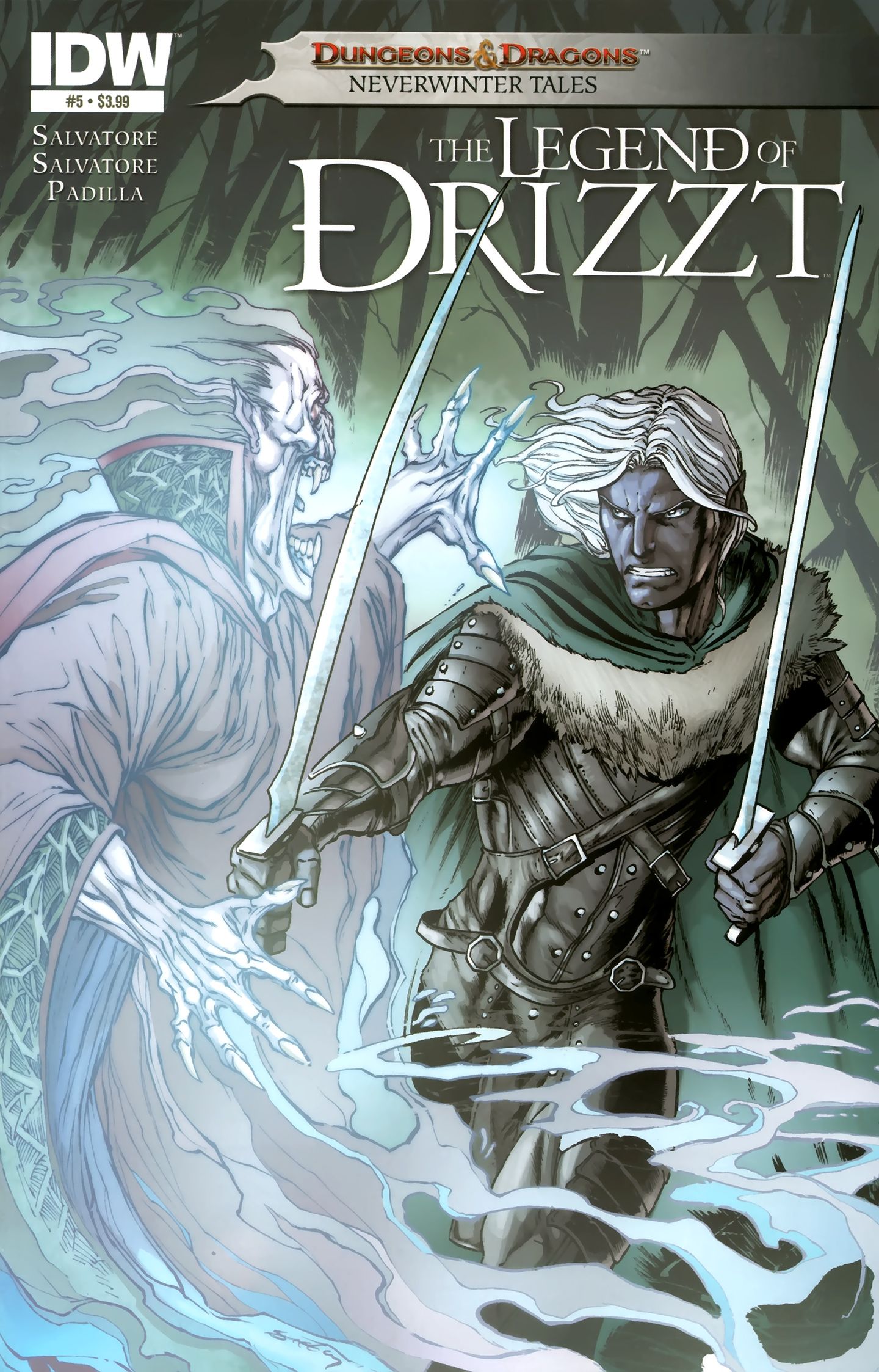 Dungeons & Dragons: The Legend of Drizzt: Neverwinter Tales 5 Page 1