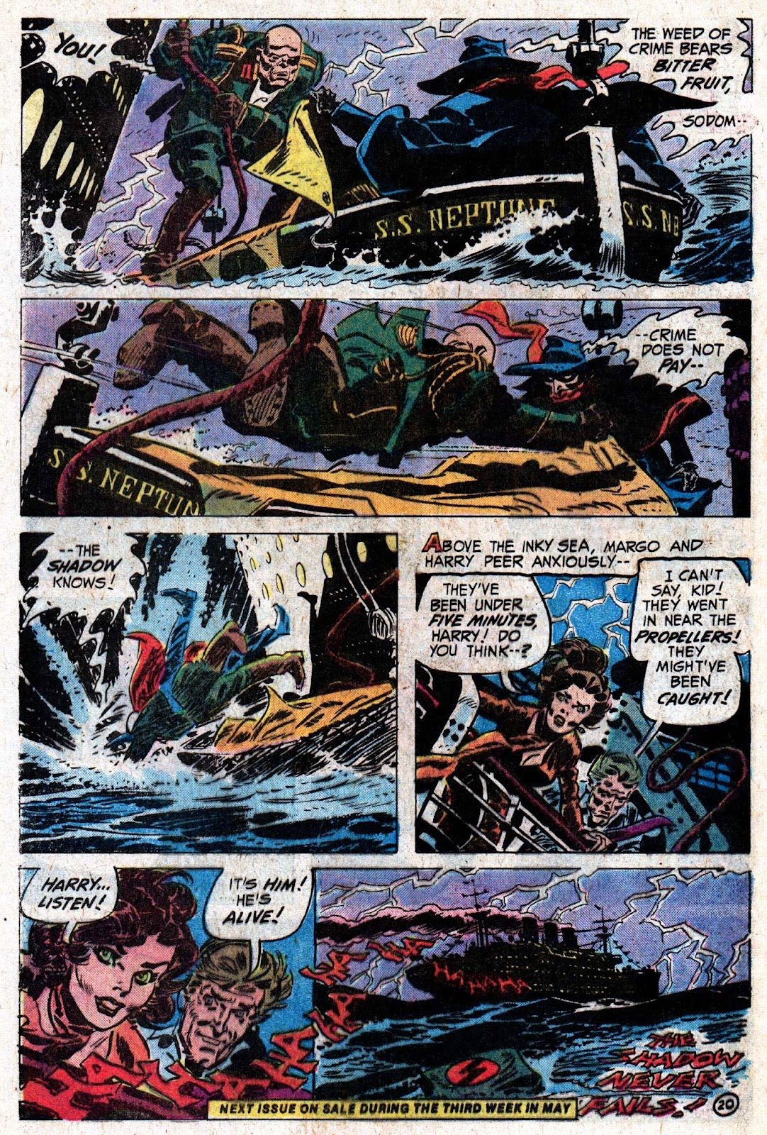 The Shadow (1973) issue 5 - Page 31